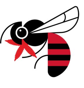 Bees eat hemp